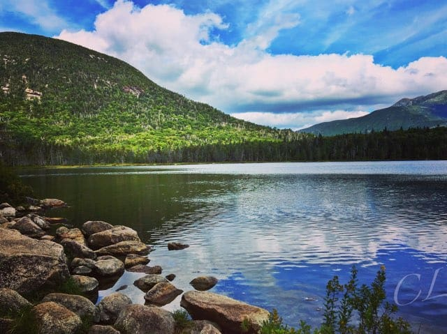 new hampshire guides