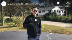 Mold Testing NH – How NH Owners Can Ensure Their Home Air Quality Is Safe