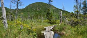 Hiking Cannon Mountain, A New Hampshire Gem